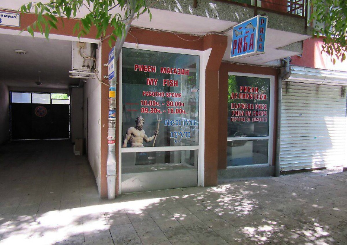 For Sale: Equipped fish shop